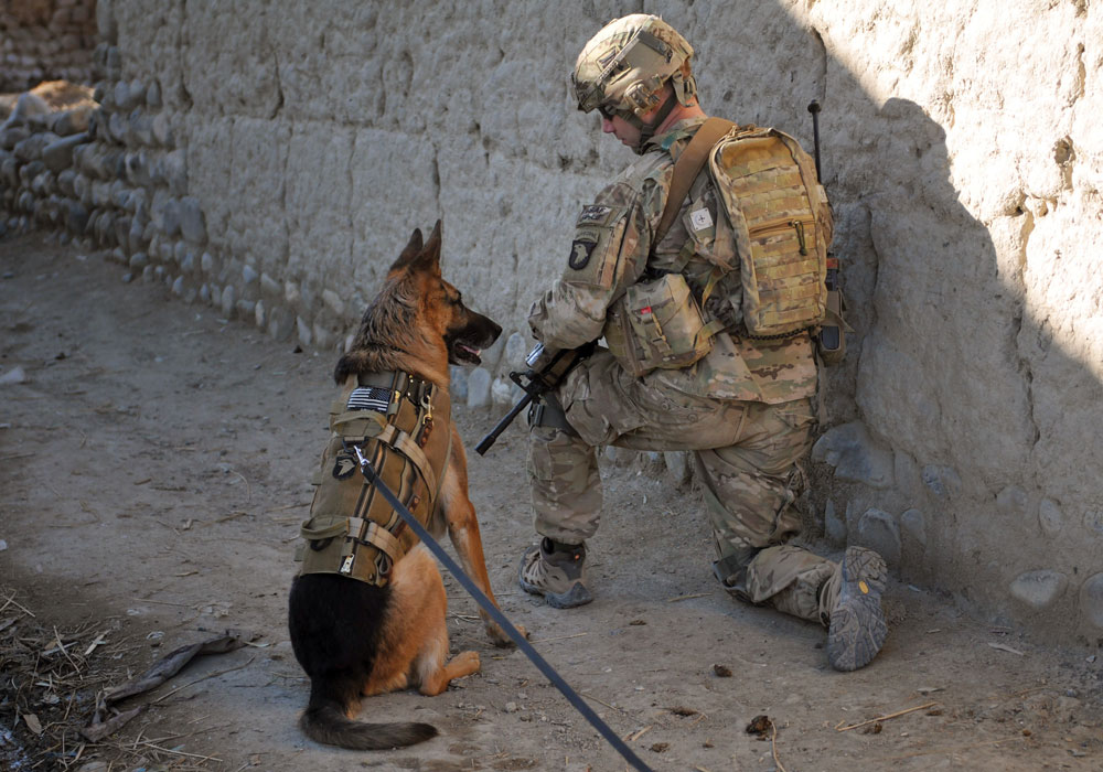 SNIFFING OUT IEDs