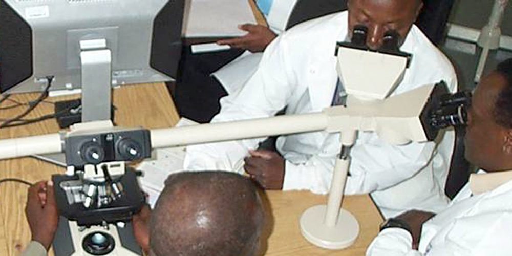 Time Magazine Ranks Malaria Vaccine Among Top 10 Medical Breakthroughs of 2011